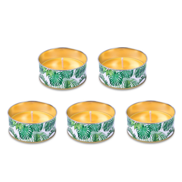 5er Set Citronella Cup Jungle, 44/100 mm, gelb